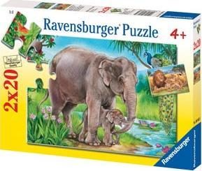 Lions & Elephants