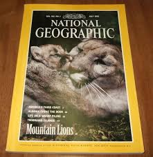 july 1992 mountain lions