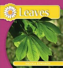 see how plants grow: leaves