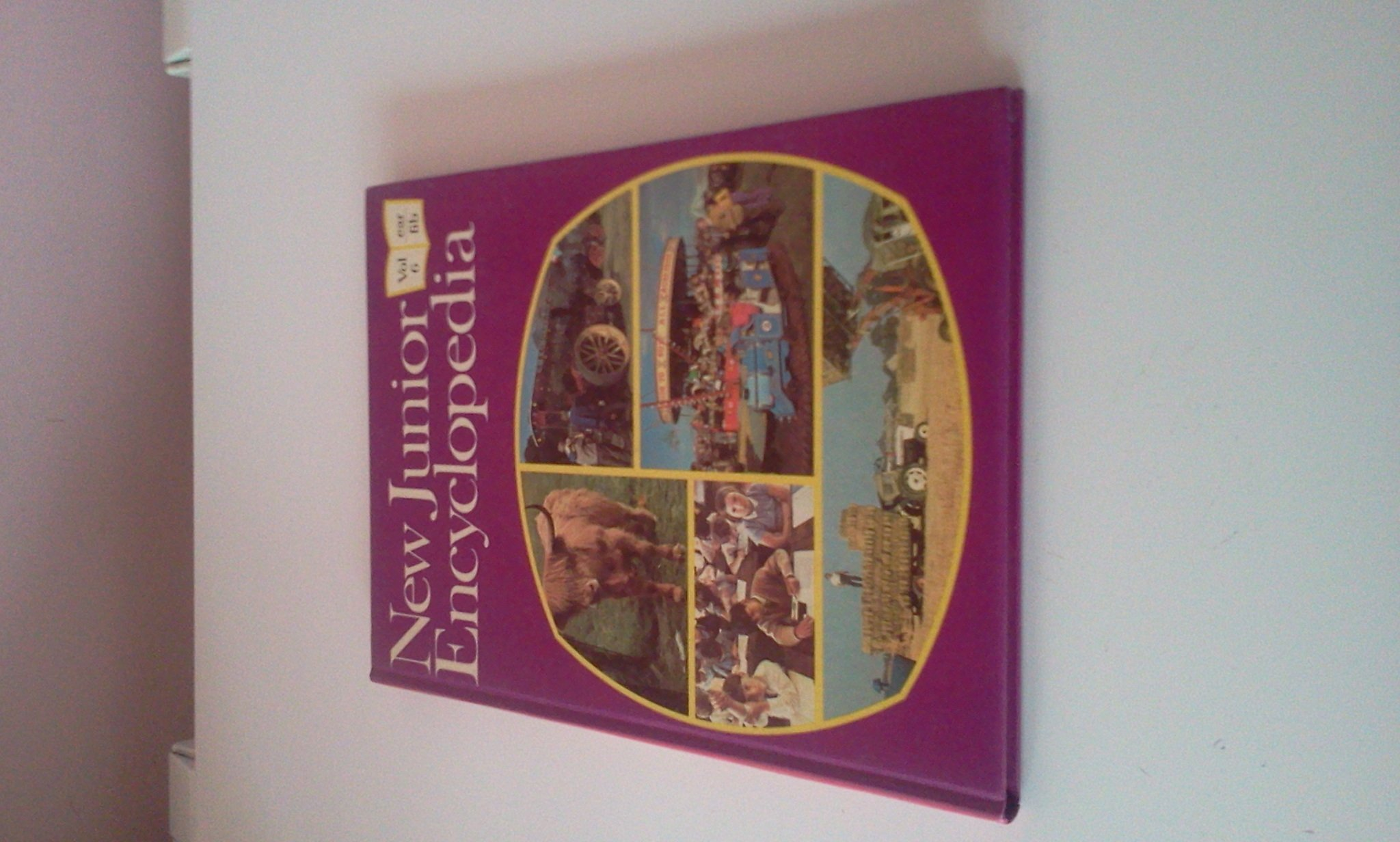 New junior encyclopedia vol 6.