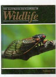 The Illustrated Encyclopedia of Wildlife, Vol. 41