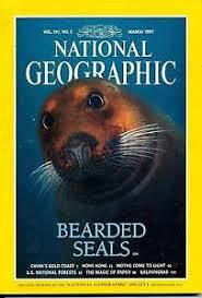Mar 1997 Bearded Seals