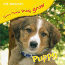 eye openers - puppy : see how they grow ( inside stickers )